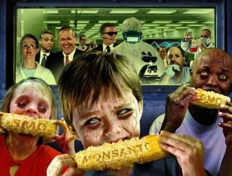 monsanto-corn-visionsgreen