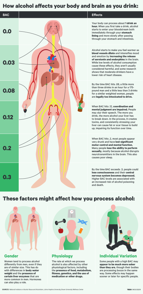 ti_graphics_how-alcohol-affects-your-brain-and-body-the-more-you-drink-2